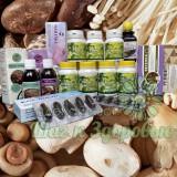 Лікування грибами, Фунготерапія, Застосування грибів в медицині